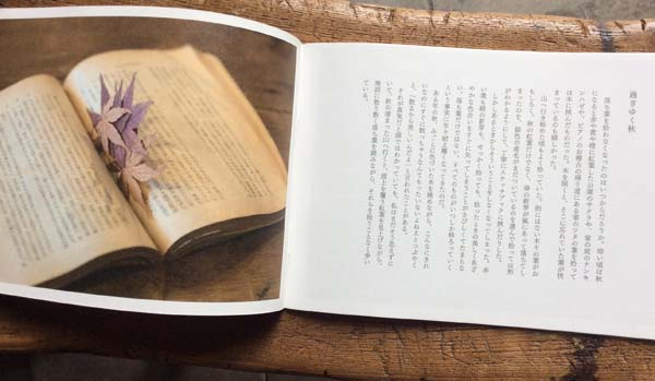 murren vol.23,ミューレン,若菜晃子