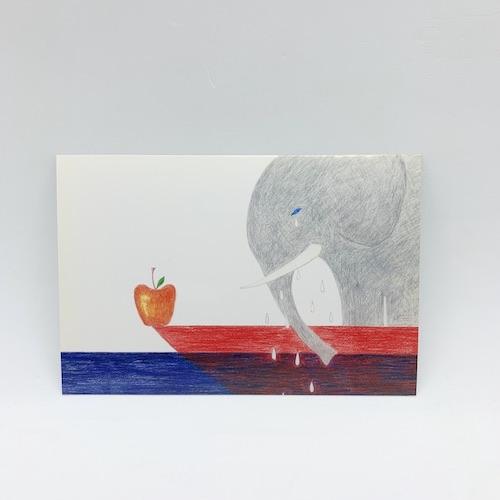 井上奈奈ポストカード「さいごのぞう6枚セット」